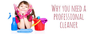 5 Good Reasons Why You Need A Professional Cleaner Homesparkle