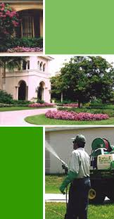 The award winning nch healthcare system offers advanced heart, cancer, obstetric, newborn, orthopedic and pediatric care. Castillo Lawn Service Inc Naples Florida Landscaping Lawn Services Lawn Care Commercial Landscape Contact Us