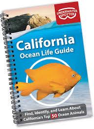 Ocean Fish Identification Guides Underwater Spotter