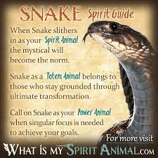 Snake Symbolism Meaning Spirit Totem Power Animal