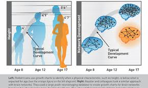 Could A Brain Growth Chart Spot Attention Problems Early