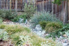 Small Picture Dry creek bed planted with California natives Kelly Marshall