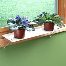 plant shelves indoor window plant shelves for shelf ideas 9 plant shelves outdoor bunnings