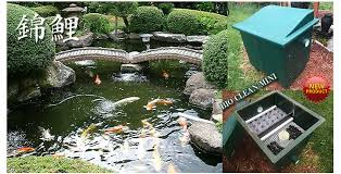 how to clean a koi pond. Fine Koi Buy BioClean Mini With How To Clean A Koi Pond K