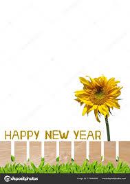 cerca del hermoso jardín con girasol letra arregla las palabras feliz año nuevo trazado de recorte incluido foto de exsodus