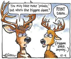 Just For Kids How Do You Count Antler Points Outdoors