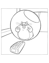 Coloring Pages For Kids All Your