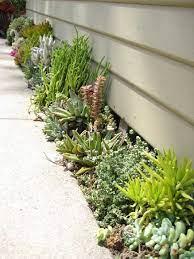 diy outdoor succulent garden ideas