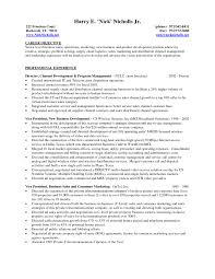 It Manager Resume Objective The Best For A Business Account