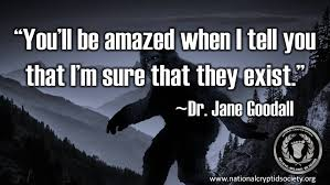 Revisiting Jane Goodall's Statements On Bigfoot The National Impressive Jane Goodall Quotes