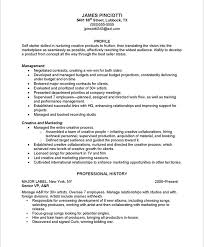Music Industry Resume Samples