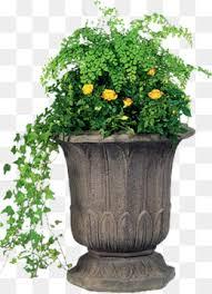 Ceramic flower pots, Small Fresh, Ceramic Pots, Flower Pot PNG Image and  Clipart