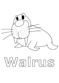 Small Picture Printable Walrus Coloring Pages Coloring Me