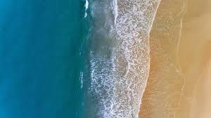 Giornata mondiale degli oceani 2021 (World Oceans Day)