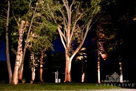 lighting outdoor trees. Wireless Outdoor Tree Lighting Trees D