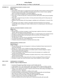 Hr Advisor Resume Sample Recruitment Consultant Resume Samples Velvet Jobs 14