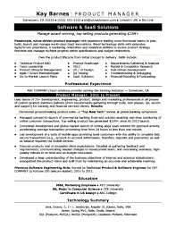 Product Manager Resume Pdf Best Qualities Of A Project Manager Product Manager Resume Sample