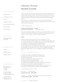 Resume On Google Docs Unique Academic Cv Template Doc Scientific Resume Template Pertaining To