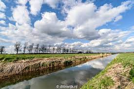 Redactie Ditiswijk - หน้าหลัก