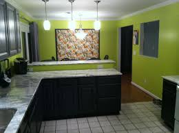 Lime Green Kitchen Walls Lime Green Walls With Two Tones Gray And Black Cabinets Sweet