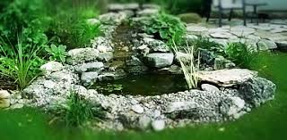 Small Garden Pond Images  Landscaping  Gardening IdeasSmall Ponds In Backyard