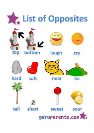 Pin by Maria on Anchor charts   Pinterest   Pre school, Color ...