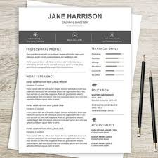 Etsy Resume Template Delectable Epsy Resume Template With Picture Bikesunshinenet