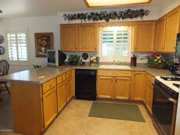 Kitchen Cabinets, Brown Rectangle Modern Wooden The Cheapest Kitchen  Cabinets Varnished Ideas For Cheap Unfinished Idea
