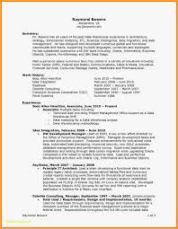 Free Resume Builder Template Free Download 20 Standard Resume