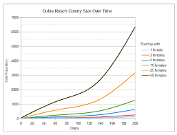 Dubia Roach Growth Chart How Many Dubia Roaches Does It Take To Start A Colony