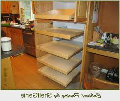 Pull Outs For Kitchen Cabinets Kitchen Cabinet Slide Outs Phidesignus