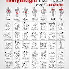 Exercise Charts New Muscle Map Work At Home Dumbbell