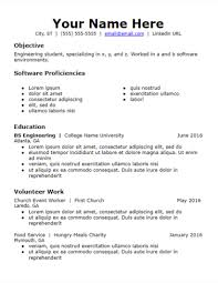 Skills And Experience Resumes Objective Volunteer Skills Based Resume Template