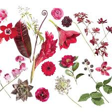 types of flowers in bouquets. our favorite flowers from the red to burgundy spectrum. types of in bouquets