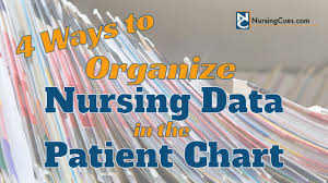 Charting Practice For Nurses 4 Ways To Organize Nursing Data In The Patient Chart