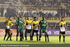 Resultado de imagem para criciuma-sc/futebol