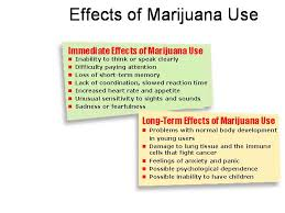 essay writer for all kinds of papers legalizing marijuana essay legalizing marijuana essay