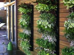 vertical garden outside kitchen window systems gardens kit