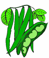green beans clip art. Contemporary Art Free Green Bean Cliparts Download Clip Art Art On Clipart  Library On Beans