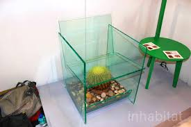 terrarium furniture. delighful furniture deger cengizu0027s threatening cactus terrarium chair puts sitters on the edge  of their seats  inhabitat  green design innovation architecture  and furniture g