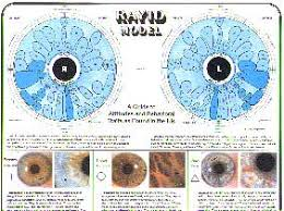 Charts Reflexology Acupressure Chakra Acupuncture More