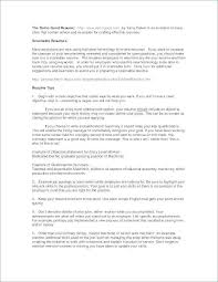 Customer Service Resume Summary Gorgeous 60 Unique Resume Summary Examples For Customer Service Shots