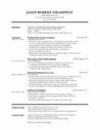 Resume Easy Format Elegant Sample Word Resume New Resume Format