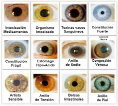 Read Iridology Chart Heres A Quick Way To Let You Know