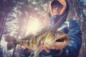 ice fishing for walleyes 10 best tips