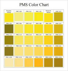 Pms Color Chart Pdf In 2019 Pms Color Chart Pms Colour