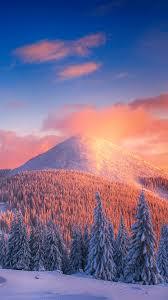 323349 Snowy, Pine, Trees, Mountains ...