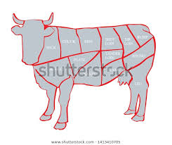 Cow Cut Beef Beef Chart Diagram Stock Vector Royalty Free