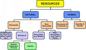 Flow Chart Of Classification Of Resources Class X Chapter 1 Resources And Development