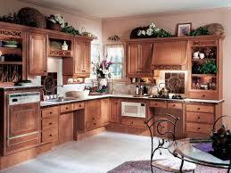 Universal Design Kitchen Cabinets Universal Design Style Kitchens Kitchen Designs Choose Kitchen